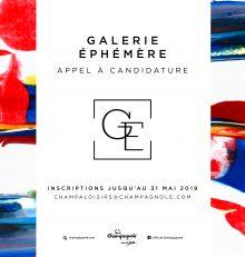 Galerie d'Art éphémère : appel à candidature