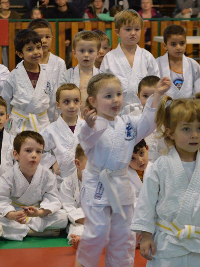 49ème tournoi du Judo club Champagnolais