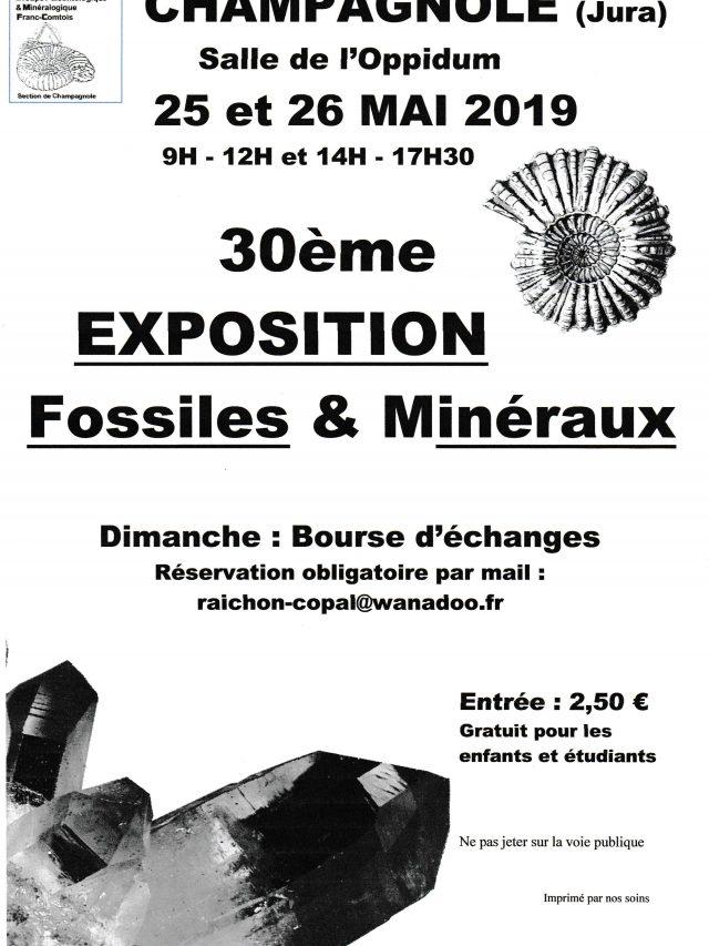 30ème exposition Fossiles et Minéraux
